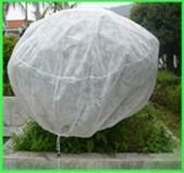 Buy cheap winter frost protection cover bags from wholesalers