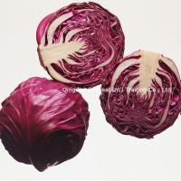 China Fresh Purple Chinese Cabbage on sale