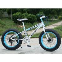 20 inch tricycle fat bike snow bicycle
