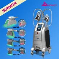 Best seller freeze machine cryolipolysis freezing fat ETG50-4S