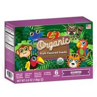 Organic Fruit Flavored Snacks - Rainforest Animals Assorted - 4.8 oz Box