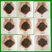 Buy cheap 2015 New Harvested Loose Green Tea from wholesalers