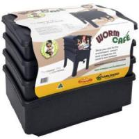 Buy cheap Worm Cafe **Free shipping** from wholesalers