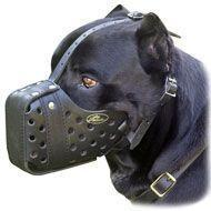 Buy cheap Leather dog muzzle - Dondi style Cane Corso from wholesalers