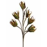 Buy cheap 1 Dozen - Artificial New Zealand Flax Sprays - 28 inch HSF223-GR from wholesalers