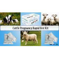 Cattle Pregnancy Test Kit