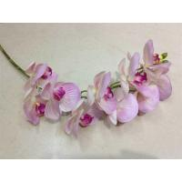 Buy cheap Artificial plants moth orchid (9 head) from wholesalers