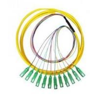 Buy cheap SC LC SC/APC SM/MM 12 core fan-out Pigtails from wholesalers
