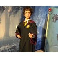 China Character Harry Potter Silicone Simulation Statue on sale