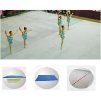 Buy cheap Top quality gymnastics equipment ryhthmic gymnastics field for training from wholesalers
