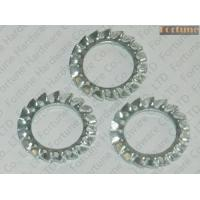 Buy cheap Metal Fasteners Stainless Steel Serrated Lock Washers Item:MTWSHLKWST from wholesalers
