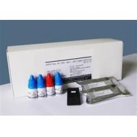 Diagnostic Kit for IgM Antibody to ToRCH (Protein Chip)