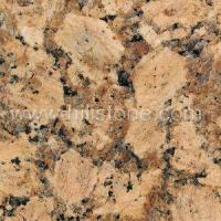 Buy cheap Stone Colors Giallo Fiorito Granite from wholesalers