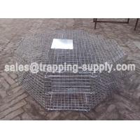 Buy cheap LB-38 Octagonal Bird Trap Cage Trap To Catch Birds For Pigeon Trap Cages from wholesalers