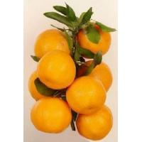Buy cheap Mandarin orange(Lugan) from wholesalers