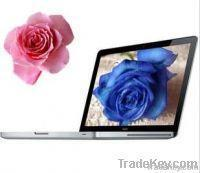 Buy cheap Fashion Apple 1278, Intel Core 2 Duo P8600 2.4 GHz, 4GB/250GB from wholesalers