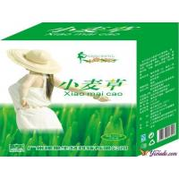 Buy cheap Weight Loss Wheatgrass from wholesalers