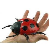 Buy cheap Anti Gravity Wall Climbing RC Beetle from wholesalers