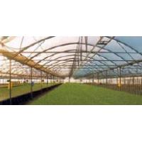 Buy cheap GREENHOUSES from wholesalers