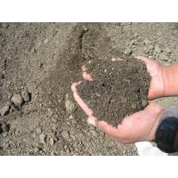 Buy cheap Soils & Soil Amendments from wholesalers