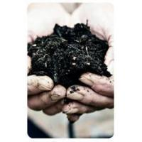 Buy cheap Soil Amendments from wholesalers