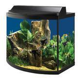 Buy cheap Bow Front Aquarium Kit from wholesalers