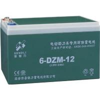 China Electric Bicyale Storage 6-DZM-12 on sale