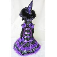Buy cheap Costumes Halloween Purple Witch with Spider Webs Lighted Pet Dog Costume from wholesalers