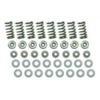 Buy cheap VALVE SPRING KIT: 1100 Turbo H5 Alloy Valve Spring Kit from wholesalers
