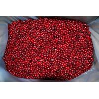 Buy cheap IQF Lingonberry from wholesalers