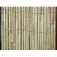 Buy cheap Bamboo Fencing 3/16 X 6' X 15' BLEACHED REED FENCING from wholesalers