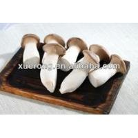 Buy cheap Agriculture Buy Fresh large edible white mushrooms from China product