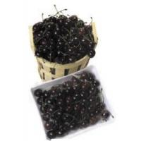 Buy cheap Cherries - Artificial - 72 Count product