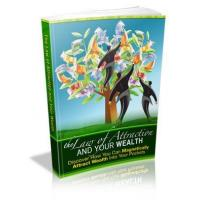 Personal Growth The Law Of Attraction And Your Wealth