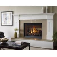 Buy cheap GAS FIREPLACES | Regency Bellavista - B36XTCE Medium Gas Fireplace from wholesalers