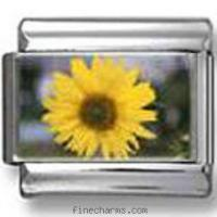 Buy cheap Sunflower Flower Photo Italian Charm from wholesalers
