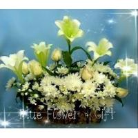 Buy cheap Lily Lily > FLOWER BASKET (BB 3005-1) from wholesalers