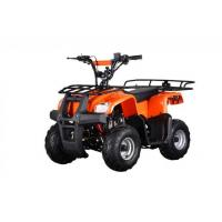 Buy cheap ATV & Quad Bikes Kids Utility ATV from wholesalers