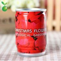 Buy cheap Flowers&Grass Christmas Flower/Flower In Can/Office Mini Plants/Christmas Gifts product