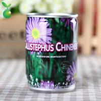 Buy cheap Flowers&Grass Callistephus Chinensis/China Aster/Canning Plant/Office Mini Plants/Hot-selling product