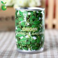 Buy cheap Flowers&Grass Origan/Can Flower/Indoor House Plants/Festival Gifts product