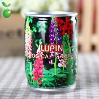 Buy cheap Flowers&Grass Lupin/Tin Can Flower/Mini Garden Canned Plants/Easy Planting product