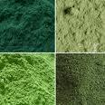 Buy cheap Spirulina、Chlorella Spirulina & Chlorella from wholesalers