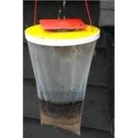 Buy cheap Flies Just Green Outdoor Fly Trap from wholesalers