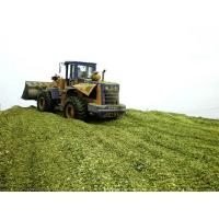 Buy cheap Silage Inoculants Silage Inoculants from wholesalers