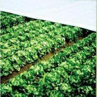 Buy cheap Vegetable Protection Cover, punbond non woven agricultural Plant Frost Protection Fabric from wholesalers