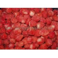 Buy cheap Frozen Berries Frozen American 13 Strawberry from wholesalers