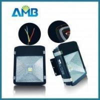 Buy cheap Energy Efficient Flood Light Bulbs China from wholesalers