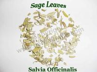 Buy cheap SALVIA OFFICINALIS ( Sage leaves ) from wholesalers