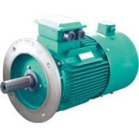 Buy cheap YVF2 series of inverter duty there-phase induction motor from wholesalers